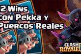 Mazo de Pekka y Puercos Reales