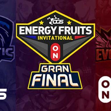 Final energy Fruits